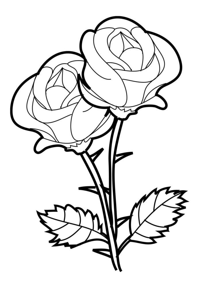sketsa gambar bunga rumit