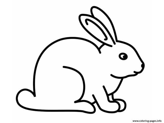 sketsa gambar kelinci